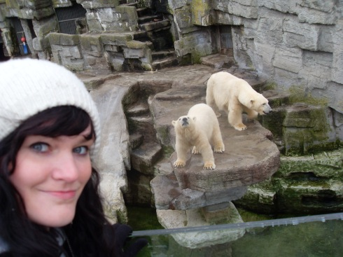 Polar Bears = amazing