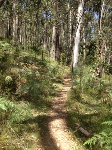 Mt. Macedon Walks.