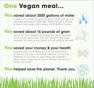 1-vegan-meal