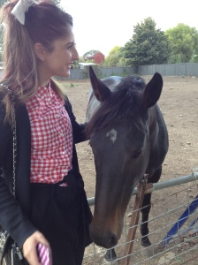 Steph with our new friend American Nightmare in Kyneton.