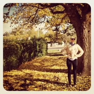 Autumn Strolls.
