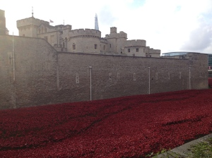 The Poppy display at Tower of London <3