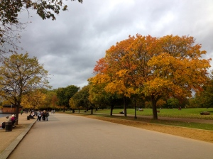 Walks in Hyde Park