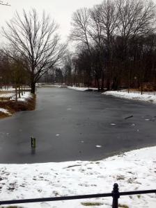 Frozen Gold fish Pond/ Goldfischteich.