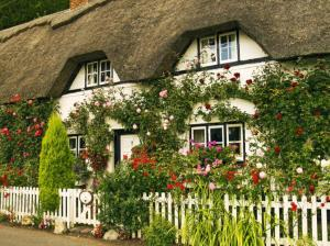 One day I will live in a cottage with someone who loves me <3