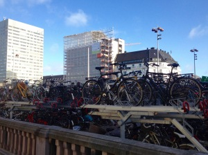 Bikes galore.