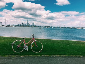 Summer Bike rides in Melbourne with Pinky